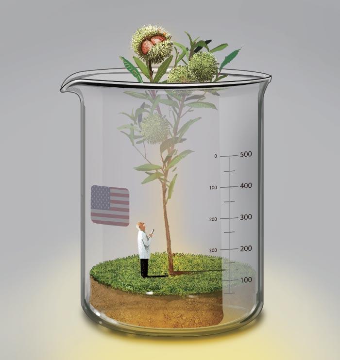 [이영완의 사이언스 카페] 조상의 숲 되살리려는 미국 과학자들