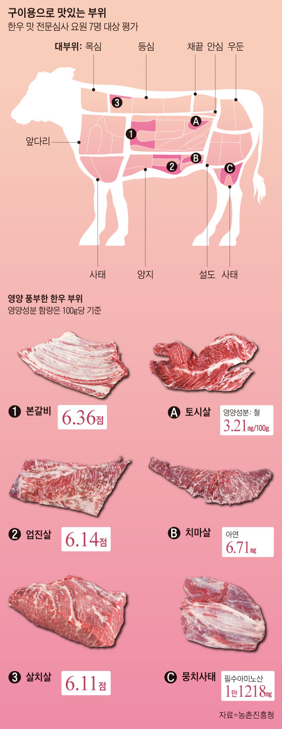 구이용으로 맛있는 부위, 영양 풍부한 한우 부위