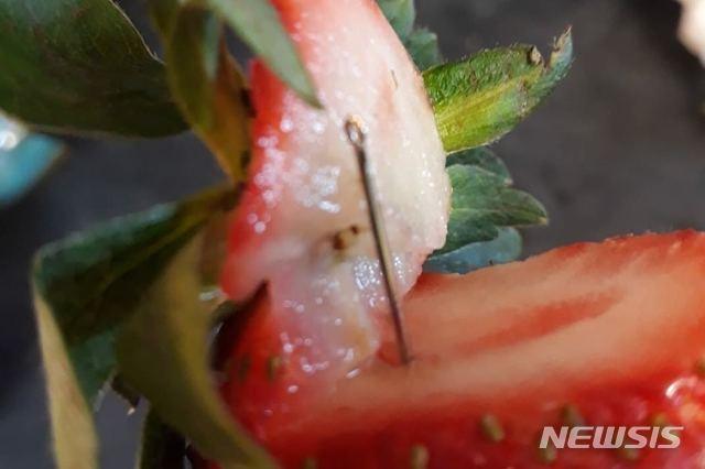 '딸기 공포' 뉴질랜드로 확산…과일상자서 바늘 발견