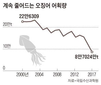 계속 줄어드는 오징어 어획량