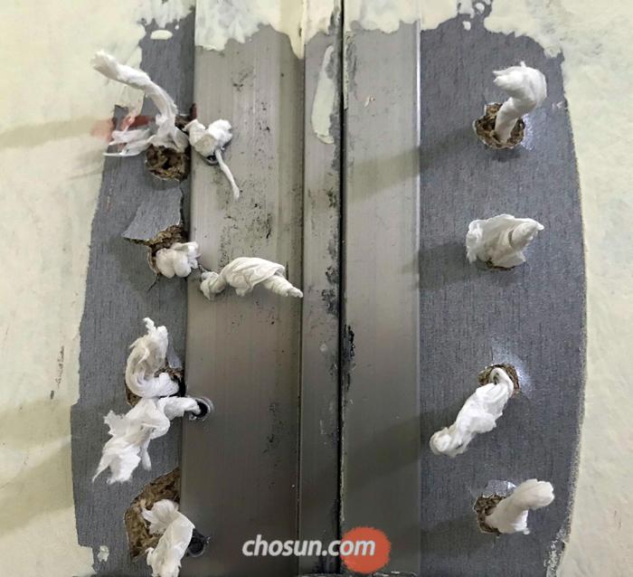 지난 8월 서울 마포구 홍대앞 놀이터의 여자화장실 문의 모습. 문에 생긴 구멍마다 여성들이 휴지로 막아 놓았다. 여성들이 공공화장실에서 느끼는 불법촬영에 대한 공포심을 한눈에 보여준다.