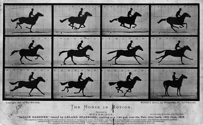 에드워드 마이브리지, 달리는 말, 1878년, 흰자판 사진, 미국 국회도서관 소장.