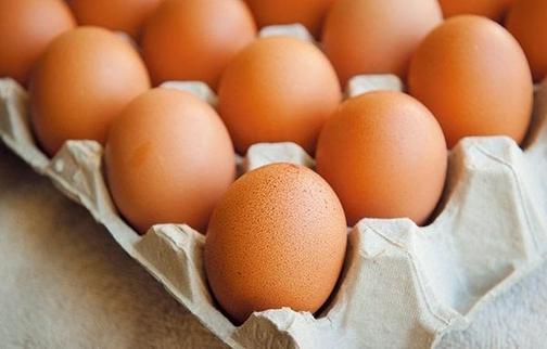 'TAJ164' 찍힌 계란서 기준치 4배 초과 해충제 성분 검출돼