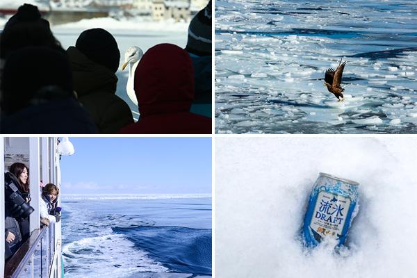 쇄빙선 오로라에 오르면 유빙 외에도 다양한 풍경들이 눈 앞에 펼쳐진다.
