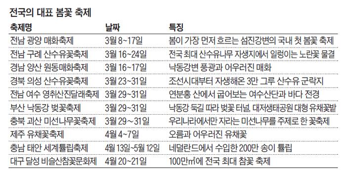 전국의 대표 봄꽃 축제 일정표