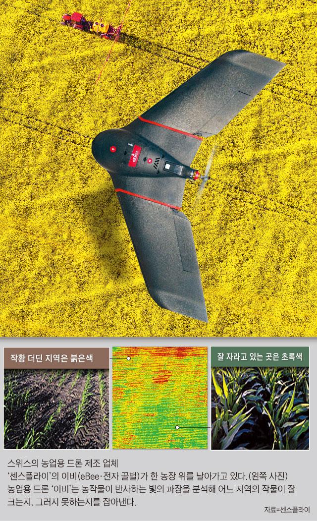 스위스의 농업용 드론 제조 업체 '센스플라이'의 이비가 한 농장 위를 날아가고 있다.