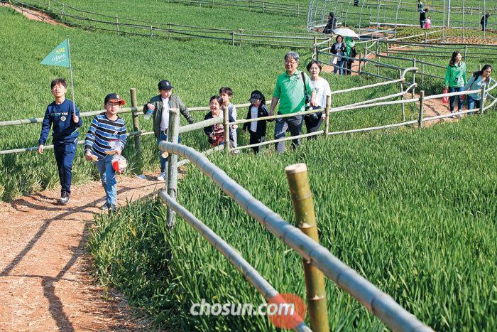 초록빛으로 물든 전북 고창 학원농장 청보리밭 사이를 걷고 있는 '팜팜시골버스' 참가자들. 팜팜시골버스는 고창을 대표하는 관광 명소와 농가 맛집, 농촌 체험까지 한 번에 즐길 수 있는 시티투어다.