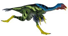 새처럼 날개를 가진 공룡 카우딥테릭스의 복원도.