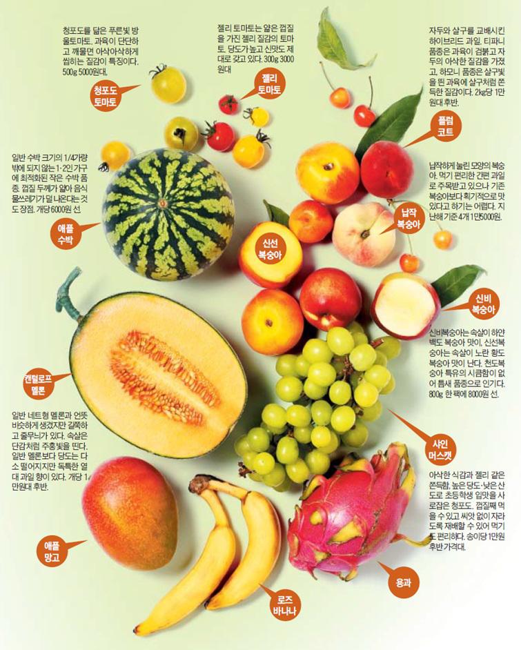 이색 과일