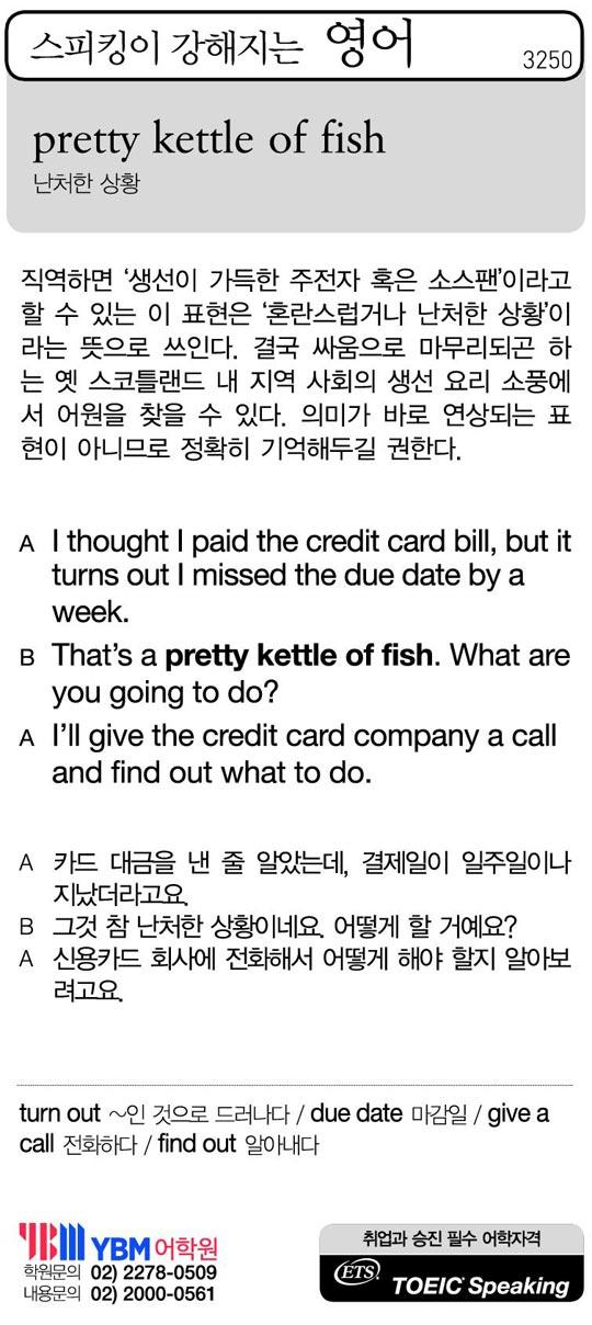 [스피킹이 강해지는 영어] pretty kettle of fish