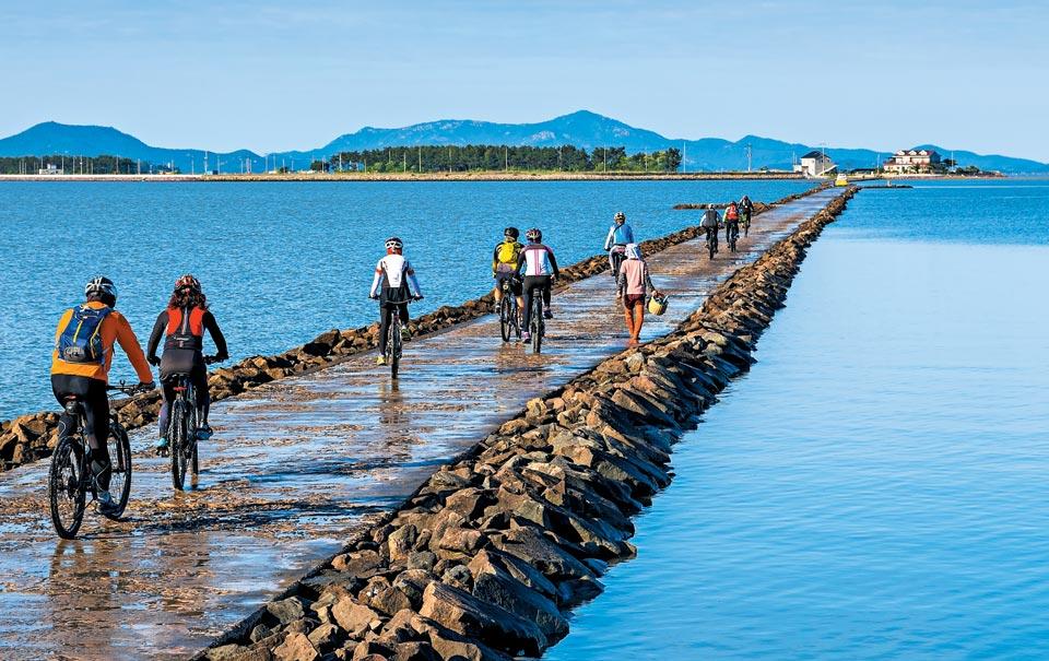 전남 신안군 증도에서 화도로 연결된 길을 따라 자전거를 탄 관광객들이 들어가고 있다.
