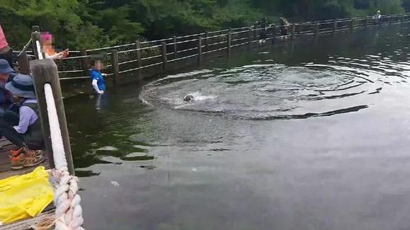 한라산국립공원 사라오름에서 수영한 등산객을 촬영한 사진. /SLR클럽 홈페이지 캡처