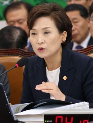 김현미 국토교통부장관은 지난 달 8일 국회 국토교통위 전체회의에 참석해 민간택지 아파트에도 분양가 상한제 도입을 검토할 때가 됐다고 말했다. /이덕훈 기자