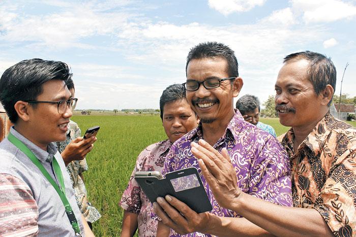 '데이터 제공자'는 하라의 블록체인 플랫폼의 핵심 구성원이다. 이들은 농부들로부터 데이터를 수집해 블록체인에 기록하고 기업이나 금융권이 이를 활용할 수 있도록 돕는 엔진 역할을 한다. 하라는 데이터 제공자들을 '농업혁신가(agripreneur)'라고 부른다. 농업(agriculture)과 혁신기업가(entrepreneur)를 조합한 말이다.