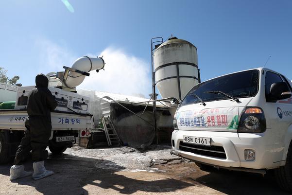 아프리카돼지열병(ASF)이 국내에서 처음으로 발생한 17일 돼지농장이 밀집한 전남 나주시 노안면에서 지자체와 축협이 운영하는 방역차가 소독 작업을 하고 있다./연합뉴스