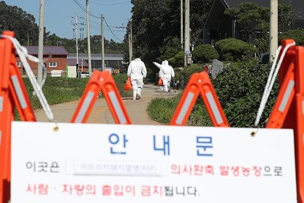 18일 경기 연천군의 한 양돈농가에서 아프리카돼지열병이 발생해 방역당국 관계자들이 농장으로 들어가고 있다. /연합뉴스