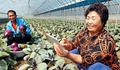 IoT와 만난 농작물… 이젠 스마트폰으로 키운다