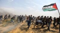 팔레스타인 5주째 유혈 충돌…3명 사망·955명 부상