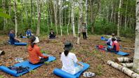 국립자연휴양림, '4일간의 숲 치유' 참가자 모집