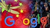 """구글 CEO """"중국용 '검열' 검색엔진 출시계획 없다""""…의회서 증언"""