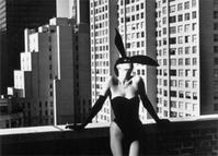 20세기 사진 거장, 헬무트 뉴턴展