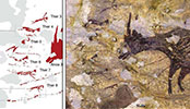 [IF] 4만4000년 前 사람·동물 그려진 '인류 最古 사냥도'