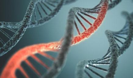 암 유발 변이 유전자, 'RNA패널'로 더 많이 찾아낸다