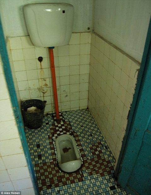 놀이공원 내 화장실은 한동안 청소를 하지 않은 듯 치우지 않은 용변이 그대로 남아있어 불결했다. /출처=데일리메일