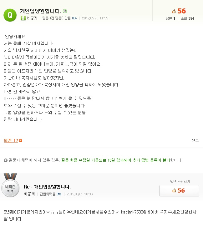 포털사이트 네이버에 올라온 '개인 입양' 글 캡처