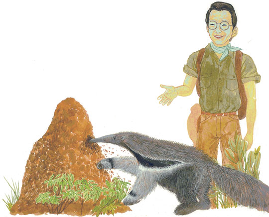 깊은 숲 속 동물들의 매력 속으로 빠져볼까?