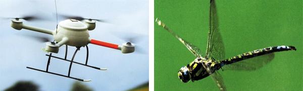 네 개의 날개가 달린 '콰드로콥터'(왼쪽)에 이어, 앞으로는 잠자리 등 곤충의 움직임을 본뜬 드론이 나올 가능성이 크다.