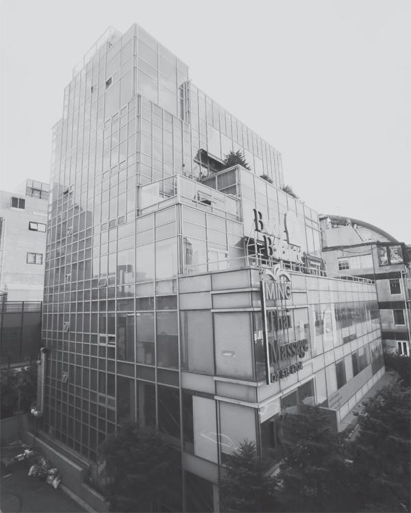 최씨의 대표적인 자산인 서울 강남구 신사동의 7층짜리 건물.