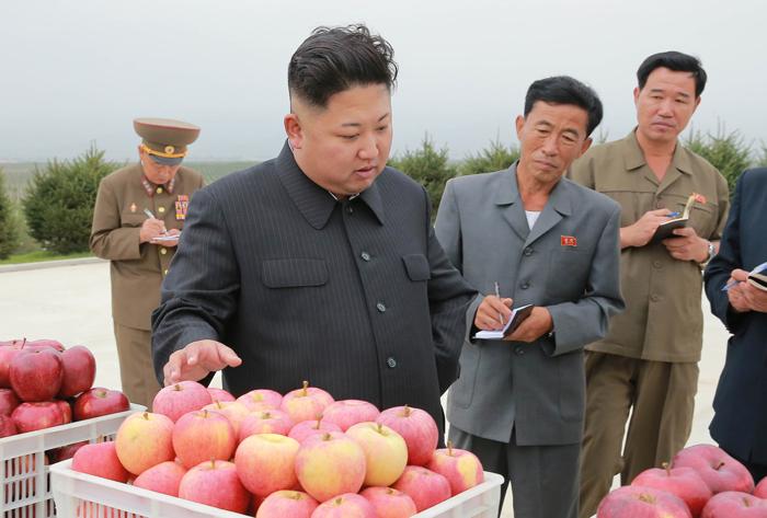 """김정은 수해 현장엔 안 가고… 김정은 북한 노동당 위원장이 '과일 풍년'을 거둔 강원도 고산과수종합농장을 시찰했다고 노동신문이 18일 보도했다. 김정은은 지난 9일 5차 핵실험 이후 공개 활동 3차례를 모두 민생 현장 방문으로 채웠다. 그러나 김정은이 최악의 수해를 겪은 함경북도 두만강 일대를 시찰했다는 보도는 아직 없다. 조선중앙TV는 지난 17일 """"김정은 동지께서 (수해 현장에) 보내주신 굴착기가 청진시에 도착했다""""고만 전했다."""