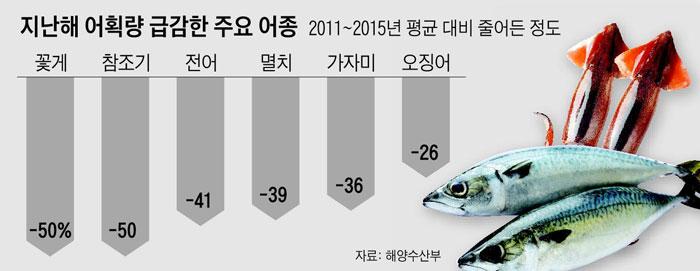 지난해 어획량 급감한 주요 어종