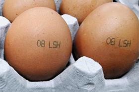 살충제 성분으로 발암물질인 '비펜트린'이 검출된 경기도 광주의 우리농장에서 생산된 계란. 껍데기에 '08 LSH'라고 쓰여 있다.