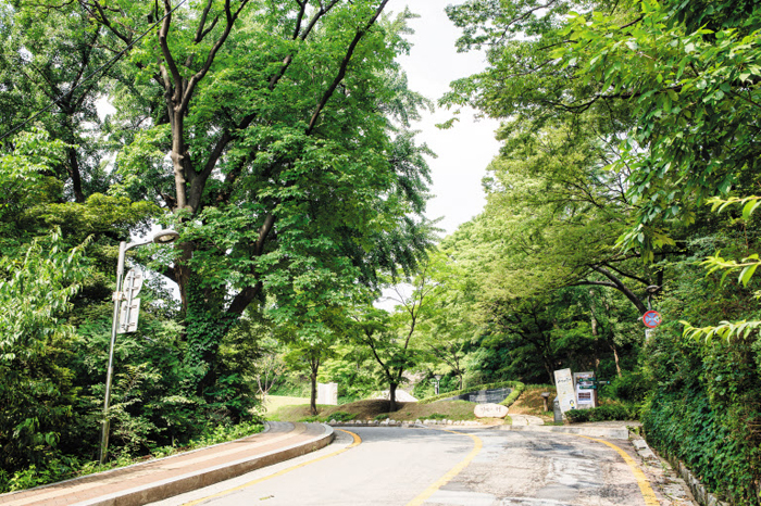 서울 예장동 서울소방방재본부에서 유스호스텔로 오르는 길. 위 사진에 나오는 통감 관저 오르는 길과 지형지물이 변함이 없다.