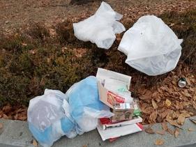 21일 민주노총 총파업이 열린 서울 여의도 인근 인도 화단에 쓰레기가 버려져 있다. /홍다영 기자