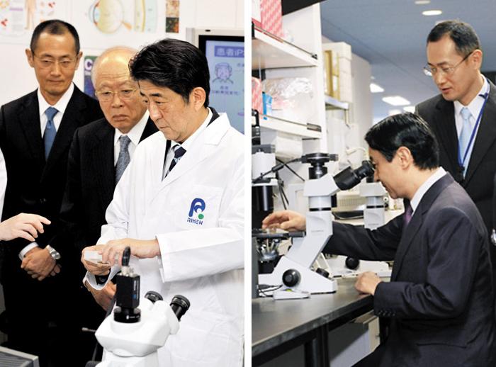 아베 총리·왕세자도 줄기세포 연구에 관심 - 일본 국민·정부·기업 모두 줄기세포 연구의 주체로 뛰어들었다. 왼쪽 사진은 2013년 1월 11일 아베 신조 총리가 교토대와 손을 잡고 연구하는 이화학연구소를 방문한 모습. 줄기세포 연구로 노벨 의학상을 받은 야마나카 신야 교토대 교수, 2001년 노벨 화학상 수상자인 노요리 료지 이화학연구소 이사장이 함께했다. 오른쪽 사진은 2011년 나루히토 일본 왕세자가 교토대 iPS 세포 연구소를 방문해 현미경으로 심근세포를 보는 모습.