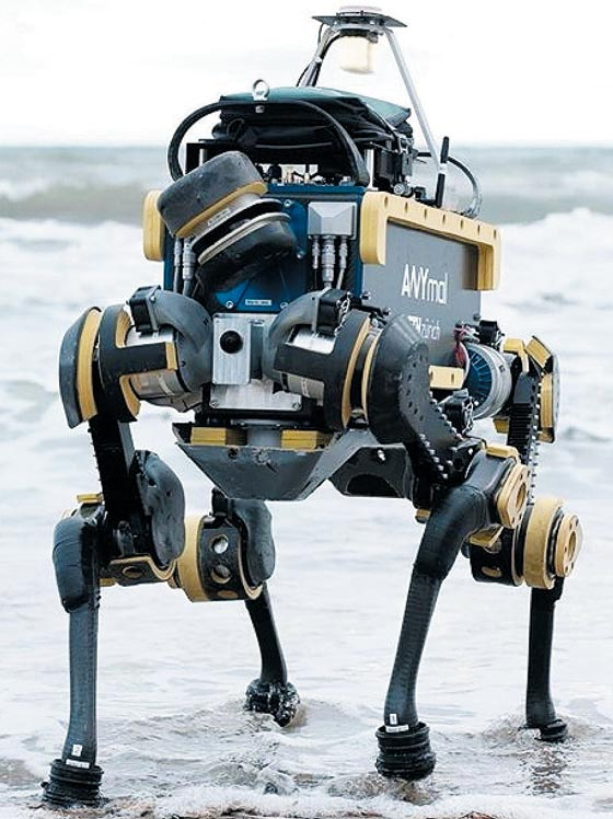 네발 로봇'애니말'