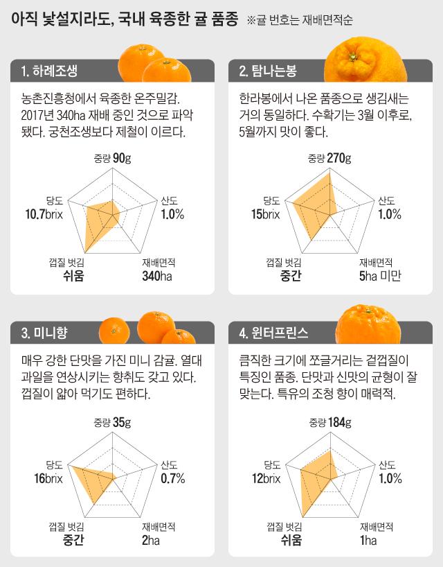 그래픽=조선비즈 디자인팀