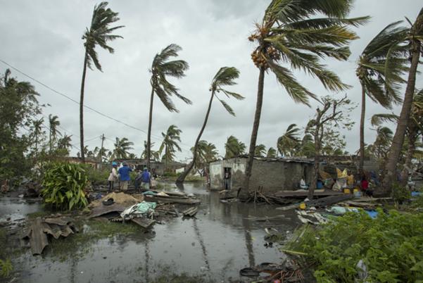 사이클론 '이다이'가 훑고 간 아프리카 모잠비크의 해안도시 베이라에서 긴급 대피했던 주민들이 2019년 3월 17일 침수된 마을로 돌아오고 있다. /AP 연합뉴스