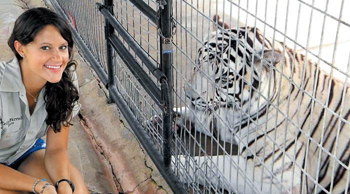 미국 아칸소주(州)에 있는 '터페틴 크릭 사파리 오두막'에선 투숙객들이 호랑이·사자·표범 등 야생동물을 구경하며 먹이를 주는 체험을 할 수 있다.