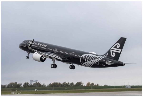 이륙 전 비행 안전교육을 거부했다는 이유로 한 여성이 2019년 5월 7일 뉴질랜드 항공 여객기에서 쫓겨났다. /에어버스