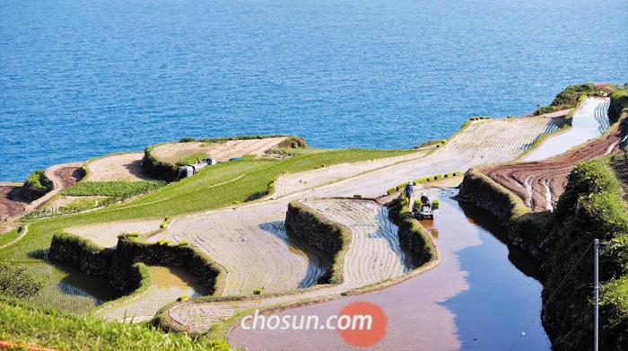 지난 8일 남해군 남면 가천 다랭이마을에서 모내기가 한창이다. 가장 한국적이면서 이국적인 풍경으로 알려진 다랭이논은 3평부터 300평까지 680여개의 논배미가 108개 층층 계단에 펼쳐져 있다.
