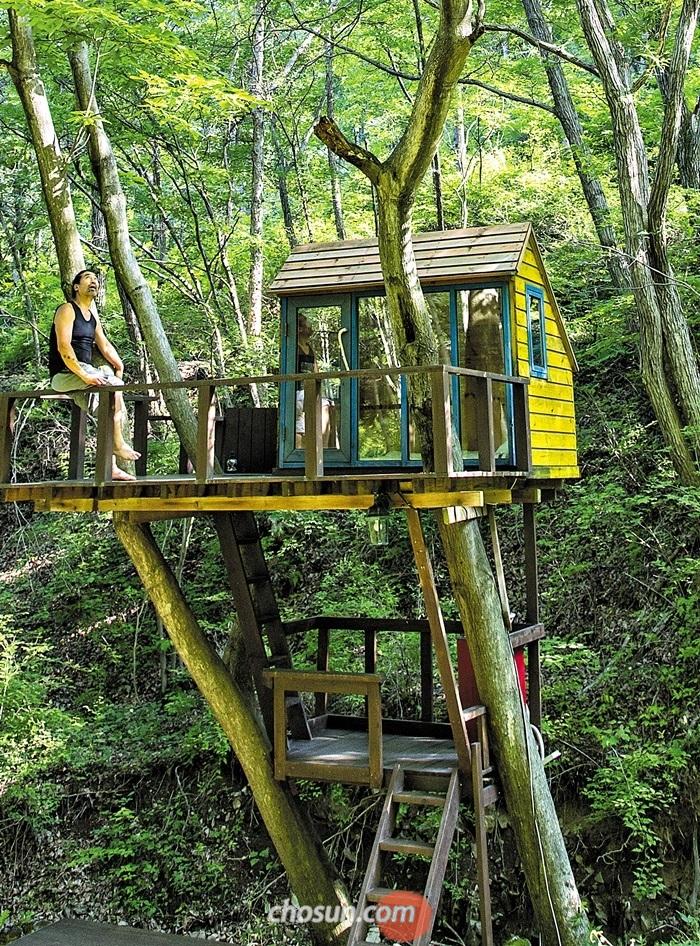 야생동물 다큐멘터리 전문 최기순 감독은 자신이 살던 러시아 타이가 숲 속 트리 하우스를 강원도 홍천 생태체험장 '까르돈'에 그대로 재현해 만들었다. 이신영 영상미디어기자