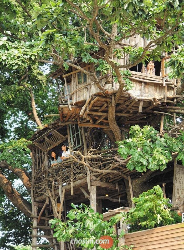 폐목재를 활용해 지은 전북 김제 '미즈노씨네트리하우스'. /박근희 기자