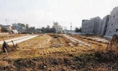 평택 미군부대 인근 신축·투자용 토지
