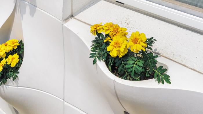 화분 일체형 외장재 '리빙 포켓'에 꽃을 심은 모습.