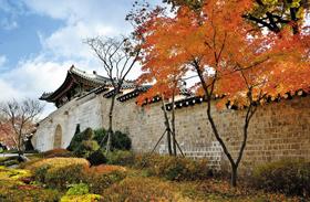 가을 맞은 경복궁 신무문 전경.