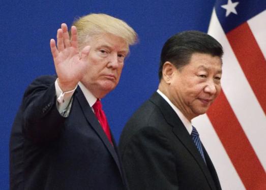 도널드 트럼프(왼쪽) 미국 대통령과 시진핑 중국 국가주석. /폭스뉴스